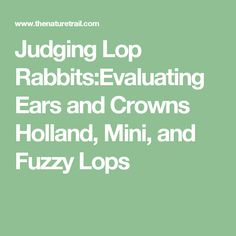 Judging Lop Rabbits:Evaluating Ears and Crowns Holland, Mini, and Fuzzy Lops