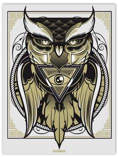 Owl, In focus: Hydro74 | From up North