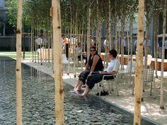 Novartis Headquarters, Forum 1 Courtyard | PWP Landscape Architecture