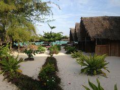 Jambo Brothers Beach Bungalows in Nungwi, Noord-Zanzibar