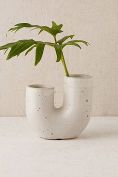 Shop Ikebana Vase at Urban Outfitters today. We carry all the latest styles, colors and brands for you to choose from right here.