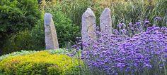 Verbena hirta and granite monuments. Photo by Tomek Ciesielski