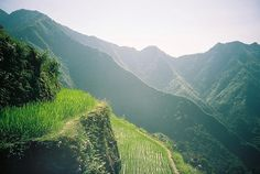 [Stairways to Heaven]    Batad Village is one of the best-preserved rice terrace in Cordilleras Philippine.  It takes 3hours by tricycle and walks from central Banaue,Philippines.