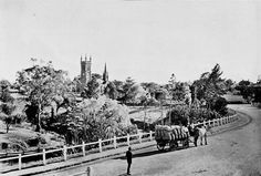 Historic black & white photo of a country road leading into Strathalbyn, South Australia c. Old Pictures, Old Photos, Adelaide South Australia, Historical Pictures, Family History, Vietnam, Past, Dolores Park, Scenery