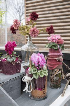 Cyclamen Scholten Pastel (©TheInspirationtable) Pastel, Table Decorations, Garden, Home Decor, Florals, Cake, Garten, Decoration Home, Room Decor