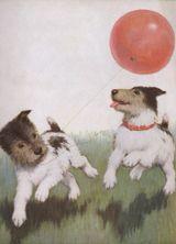 Balloons Birthday Dogs Editor: Blue Lantern Publishing Illustrator: Warren Davis Imprint: Laughing Elephant Playing'