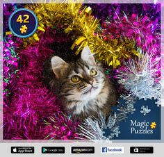 I've just solved this puzzle in the Magic Jigsaw Puzzles app for iPad. Ipad, Image Storage, App Store Google Play, Jouer, Cute Animals, Jigsaw Puzzles, Magic, Art, Apps