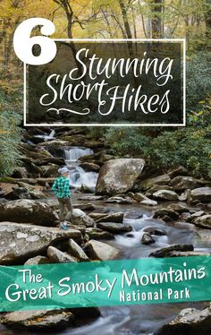 6 Stunning Short Hikes in the Smoky Mountains. Did you know that The Great Smoky Mountains are the most visited national park in the USA? Located near Gatlinburg, Tennessee in the Appalachian Mountains this spectacular national park offers well maintained trails, beautiful mountain views, and lovely waterfalls. Read about our favorite short day hikes here! By Wandering Wheatleys (@wanderingwheatleys) #GreatSmokyMountains #Hiking #Trekking #Camping #NationalPark #Tennessee #TN