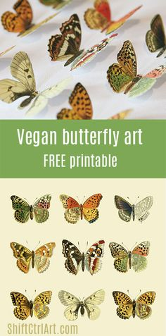 Get a framed printable Vegan butterfly framed art - Mother's day DIY idea - including printable Diy Paper, Paper Crafts, Paper Art, Diy Crafts, Butterfly Frame, Butterfly Crafts, Printable Butterfly, Butterfly Mobile, Butterfly Template
