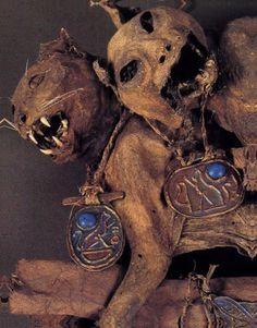 Cat mummies. i need these next to the frog museum. worshipped as Gods and the cats have never forgot that :)