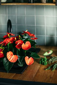 Inspiratie: zo style je de keuken met anthurium planten Green Kitchen, Home Decor Inspiration, Cool Kitchens, Strawberry, Vegetables, Fruit, Flowers, Food, Tips