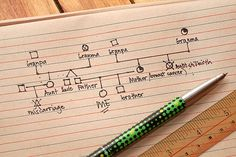 How to Make a Genogram: 7 steps (with pictures) - wikiHow
