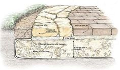 LANDSCAPE CONSTRUCTION~DETAIL;   Paver walkway with limestone edging
