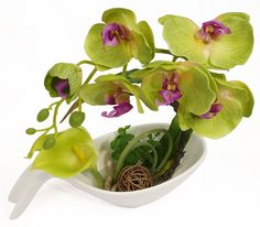 NNEE Artificial Phalaenopsis Orchid Arrangement with Decorative Flower Pot - Lime Green Orchild 2 >>> Once in a lifetime offer : Artificial Plants Decor