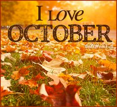 I Love October Graphic plus many other high quality Graphics for your Facebook profile at CafeMoms.com.