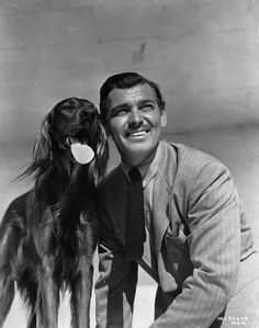 Clark Gable posing with a red setter in 1941. #celebrities #pets #Dogs