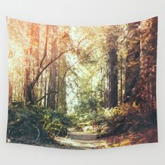 96 Best Murals Wall Stickers Tapestries Images In 2019