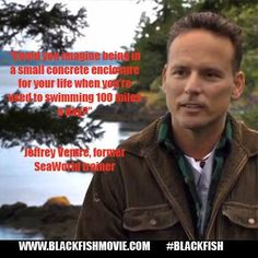 """Could you imagine being in a small concrete enclosure for your life when you're used to swimming 100 miles a day?"" #Blackfish"
