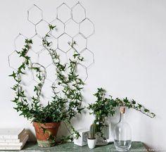 Une treille pour faire courir le lierre le long d'un mur. #treille #lierre #mur #végétal #diy #bricolage