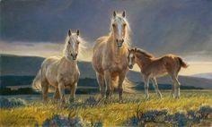 National Wildlife Galleries: The Wildlife Art of Nancy Glazier
