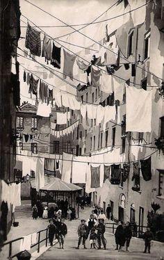 Truogoli S.Brigida - Genoa - Italy