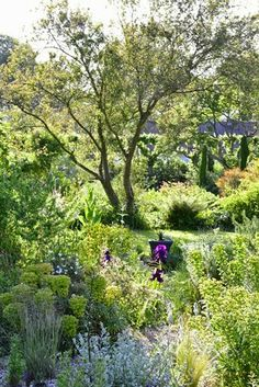 I love the layers of this garden I found at clausdalby.dk.