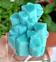 Amazonite - helps to balance feminine energy and great for the throat chakra. #crystalhealing Minerals And Gemstones, Rocks And Minerals, Beautiful Rocks, Mineral Stone, Rocks And Gems, Turquoise, Stones And Crystals, Gem Stones, Throat Chakra