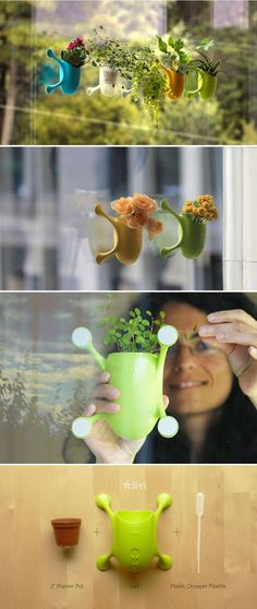 Livi uses 3D printing technology and recycled materials to produce a colorful planter with an insect-like body and legs that adheres to windows