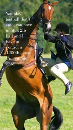 You play football ? You have to lift a 2 lb ball. I have to Control a 1200 Lb horse . Funny Horse Memes, Funny Horse Pictures, Funny Horses, Cute Horses, Pretty Horses, Horse Love, Beautiful Horses, Funny Animals, Horse Humor