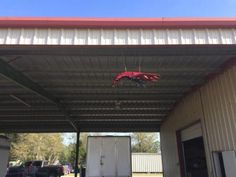 Our Crawfish Supplier Crawfhish Plus in Lantel, LA