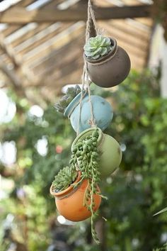 von 4 bunten Sukkulenten Pflanzgefäße Vintage Keramik Vase Lu… of 4 Colorful Succulent Planters Vintage Ceramic Vase Air Plant Holder Garden Hanging Pots Miniature Greek Pottery – Brooke Blasko Rosati Decoration - Hanging Vases, Hanging Succulents, Succulents Garden, Garden Pots, Planting Flowers, Flowers Garden, Succulents Wallpaper, Succulents Drawing, Indoor Succulents