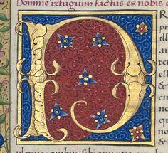 S. Hieronymus , Epistolae. II Auteur : DAMASUS I, papa (s.). Auteur du texte…