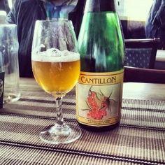 Cantillonin tyrnilambic