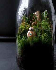 I was lucky enough to get my hands on a few teeny tiny BB-8 figurines a few weeks ago so I made a limited edition terrarium (link to shop in bio) featuring the cute little guy. Seriously he was the best part of the movie, just so adorable!  #starwars #episode7 #bb8 #bb8droid #theforceawakens #terrarium #terrariums #starwarstheforceawakens #socute #starwarsterrarium