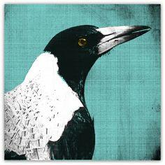 Pop Art Magpie