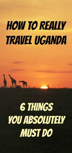 Uganda offers many options for responsible, sustainable travel. Included are zip lining in a rain forest, white water rafting on the River Nile, a marathon, and community-based volunteering opportunities.