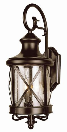 TransGlobe Lighting Outdoor Wall Lantern | Wayfair