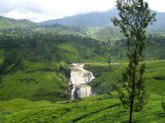 Kandy Nature en Nuwara Eliya, Sri Lanka