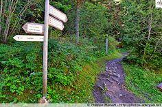 Piste d'Isertan, Pralognan-la-Vanoise (France, Auvergne-Rhône-Alpes, Savoie)