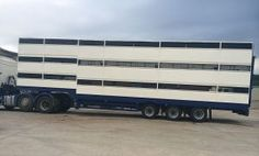 5 Things your Triple Deck Livestock Trailer Insurance Broker should have. Call Truck Insurance HQ and our Brokers will help you 1300 815 344 Insurance Quotes, Life Insurance, Trailer Insurance, Travel And Tourism, Travel Destinations, Homeowners Insurance Coverage, Livestock Trailers, Insurance Broker, Travel Nursing