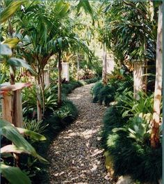 39 best DIY garden walkway idea you can build build Bali Garden, Balinese Garden, Backyard Garden Landscape, Diy Garden, Small Backyard Landscaping, Tropical Landscaping, Garden Cottage, Garden Ideas, Backyard Ideas