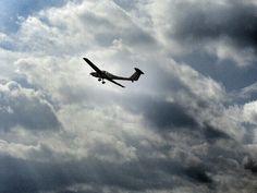 飛び立つ Take flight