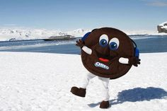 Oreo Lands On Antarctica, Completes 'World Domination' - DesignTAXI.com