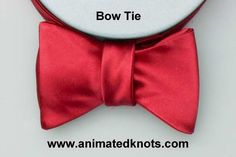 Animation: Bow Tie Knot Tying (Household)