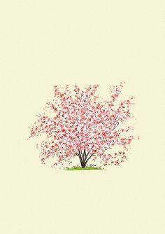 Magnolia Trees are my favorite!