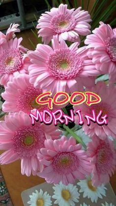Good Morning Gift, Good Morning Wishes Friends, Good Morning Tuesday, Morning Msg, Good Morning Greetings, Good Morning Boyfriend Quotes, Good Morning Quotes, Good Morning Images Flowers, Good Morning Inspiration