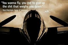 The Flying Bulls! Pilot Quotes, Aviation Quotes, Toni Morrison, Darth Vader, Songs, Red Bull, Airplane, Fictional Characters, Golf