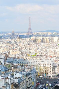 View from Notre Dame, Paris. Tips for planning a Paris Vacation. http://www.kevinandamanda.com #paris #travel #france