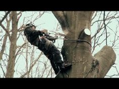 ▶ ARBOREX    Grimpeur - Elagueur - Abattage - Elagage - Tree removal - YouTube