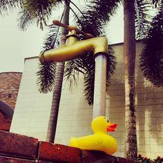 El Pato, bajo el chorro de una enorme llave de agua, en Bucaramanga, Santander, Colombia.